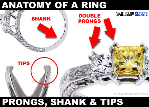 Double Prongs Shank And Prong Tips