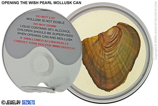 Opening Wish Pearl Mollusk Can