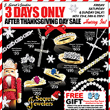 After Thanksgiving Sale Sample Ad