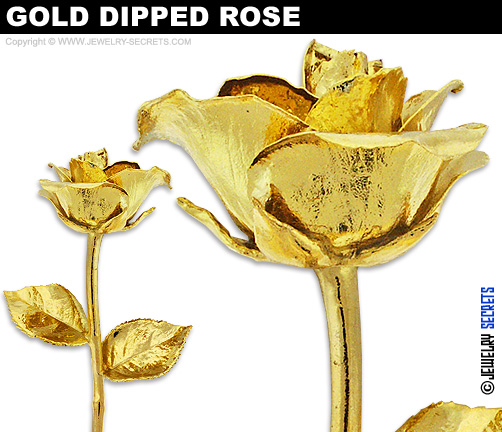 Best Gold Dipped Rose