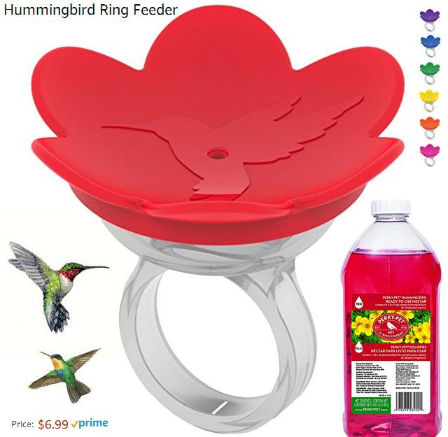 Hummingbird ring feeders