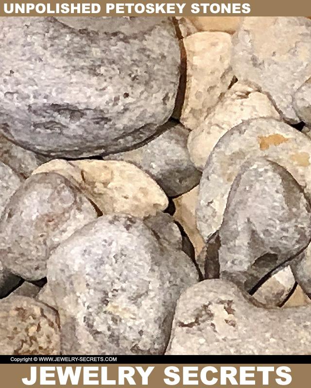 Unpolished Petoskey Stones